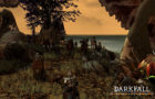 darkfall_screenshots_05