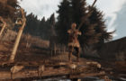 life_is_feudal_mmo_screen_04