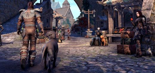 Разыгрываем код активации Steam от The Elder Scrolls Online Greymoor