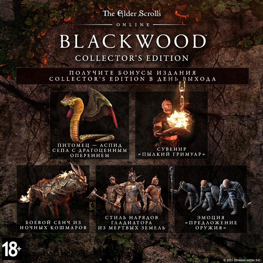 Для The Elder Scrolls Online выйдет глава «Blackwood»